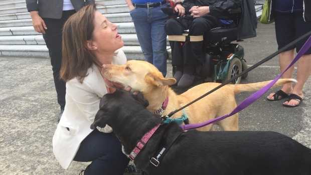 NDP MLA Selina Robinson gets some kisses from some furry friends after introducing the Distressed Animal Act. (Richard Zussman/CBC News)